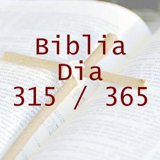 365 dias para la Biblia - Dia 315