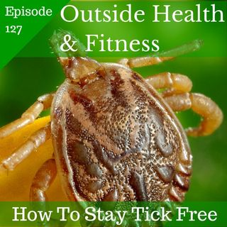 How to Effectively Stay Tick Free