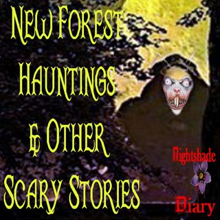New Forest Hauntings and Other Scary Stories | Podcast
