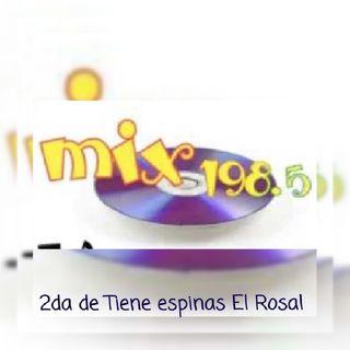 2da de tiene espinas el rosalFLMix198.5