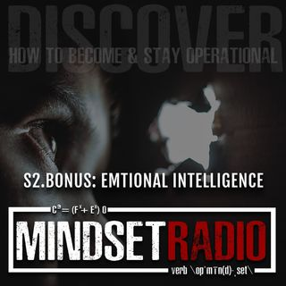 S2.BONUS: Exploring the aspects of Emotional Intelligence