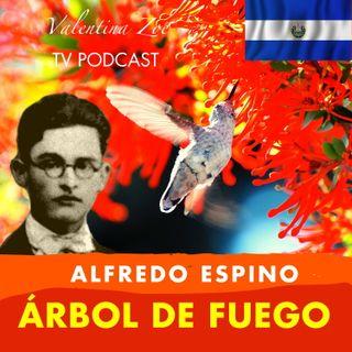 ARBOL DE FUEGO ALFREDO ESPINO 🌳🔥 | Poema Árbol de Fuego de Alfredo Espino 😘 | Valentina Zoe Poesía 💖