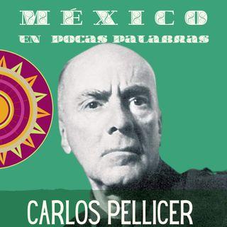 Carlos Pellicer Cámara - Biografía corta