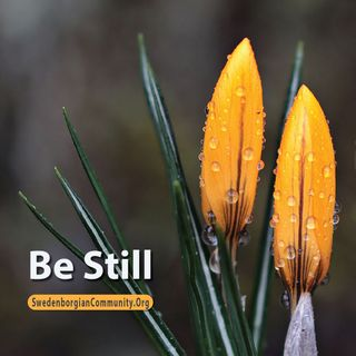 Be Still - Interfaith Reflection & Prayer Service