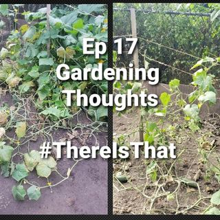 Ep 17 Garden Thoughts