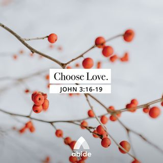 Advent: Choosing Love