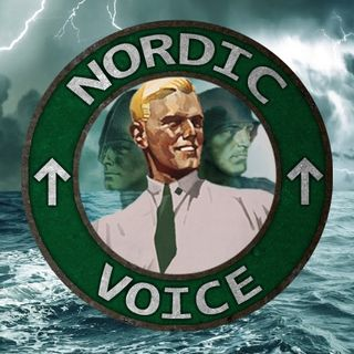 Nordic Voice #1: New Nordic Podcast!