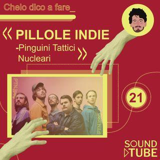 #21. PILLOLE INDIE - PINGUINI TATTICI NUCLEARI