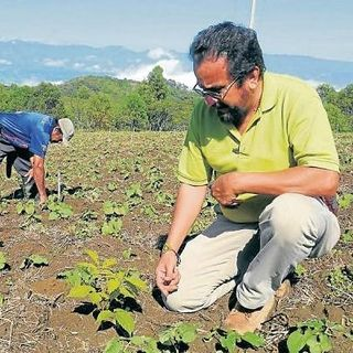 NUESTRO OXÍGENO Importancia de la producción de alimentos orgánicos - Ing Nelson Galindo