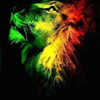 # 8 Reggae