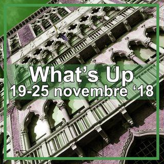 What's up: 19-25 novembre 2018