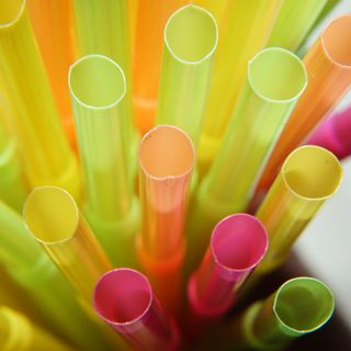 Palm Straw - Biodegradable Plant Based Straws.