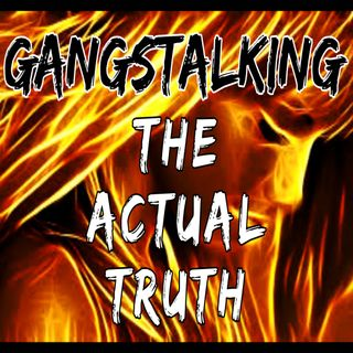 The Actual Truth about Gangstalking/TIs