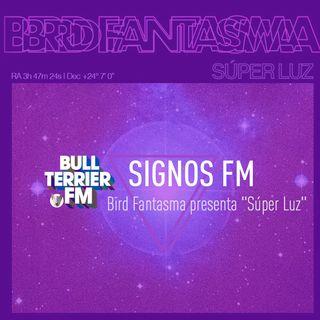 """Bird Fantasma presenta """"Súper Luz"""" - SignosFM"""