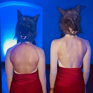 #trento Y Generation Festival - Abbiamo trovato il lupo