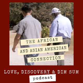 The African and Asian American Connection