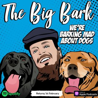 The Big Bark #20 Dealing with Grief of losing a beloved pet