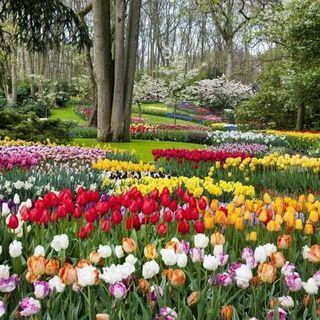 Outras primaveras