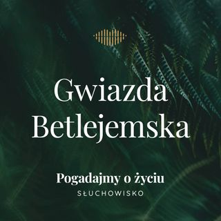 121. Gwiazda Betlejemska
