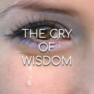 The Cry of Wisdom - Morning Manna #2951