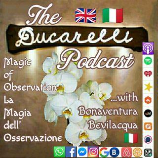 Inganno e Magia dell'Osservazione Deception and Magic of Observation Bonaventura Bevilacqua International School of Self Awareness AAA