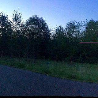 University of Washington Bothell Crows Morning Flight