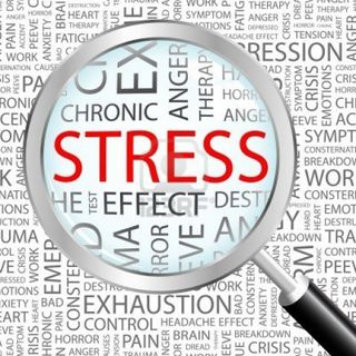Stress e intestino