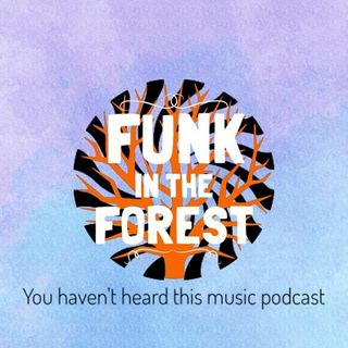 Funk in the forest. Festival special.