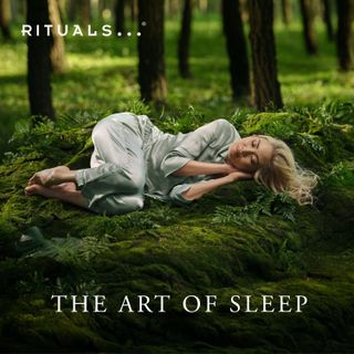 The Art of Sleep