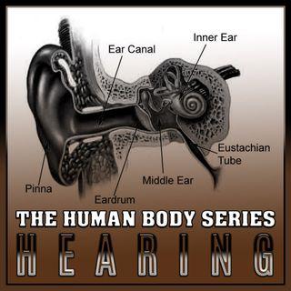 Hearing (The Human Body Series)