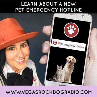 New Pet Emergency Hotline