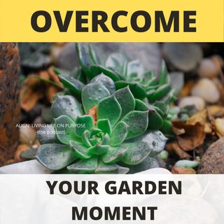 Overcoming The Garden