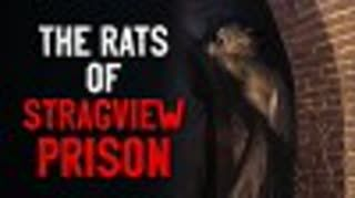 """The Rats Of Stragview Prison"" Creepypasta"