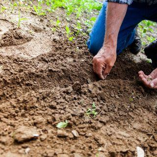 """Mission Soil: """"Uniti per la salute dei suoli """""""