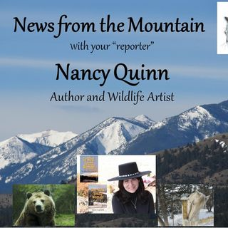More News From the Mountain with Author Nancy Quinn