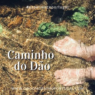 Good Morning Portugal! Experience Portugal: The 'Caminho Do Dao'