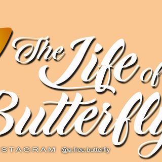 The Life of a Butterfly #PODCAST #2  Trust In The Lord