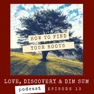 Ep 14 How to Find Your Roots