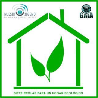 NUESTRO OXÍGENO Siete reglas para un hogar ecológico - Yaneth Pinilla