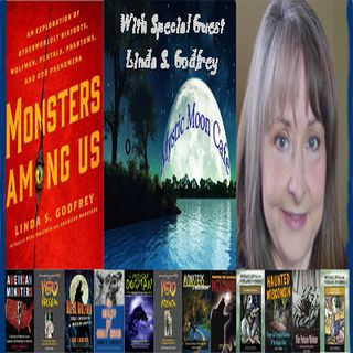 Linda Godfrey Guest Stars on Mystic Moon Cafe