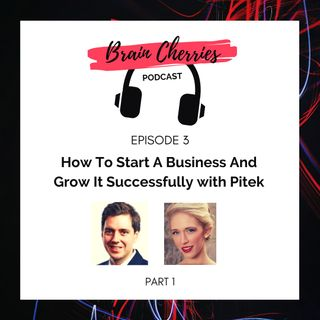 3. How To Start A Business And Grow It Successfully With Pitek - Part 1