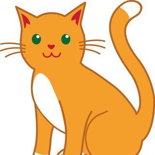 comentarios-los-gatos-no-comen-ratones-irene-gomez