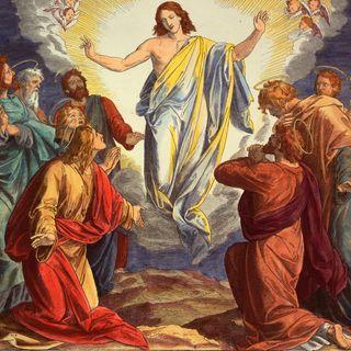 Konzil von Ephesus wird eröffnet (am 22.06.431)