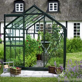 Juliana Premium Dwarf Wall Greenhouse