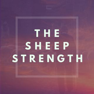 The Sheep Strength