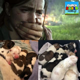 Puppies Puppies Puppies! & The Last Of Us II Release Date!