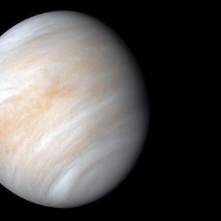 Vita su Venere, il mistero si infittisce