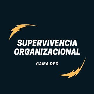 Supervivencia Empresarial - Capitulo 0. Introducción