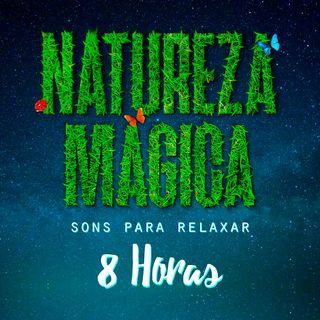🎵 Playlist Natureza Mágica • 8 horas