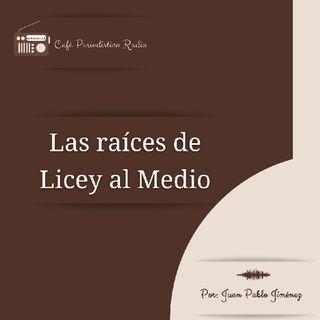 Las Raíces De Licey Al Medio, Café Periodístico Radio